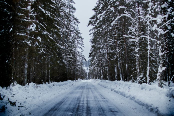 A icy and dark road flanked by tall trees.